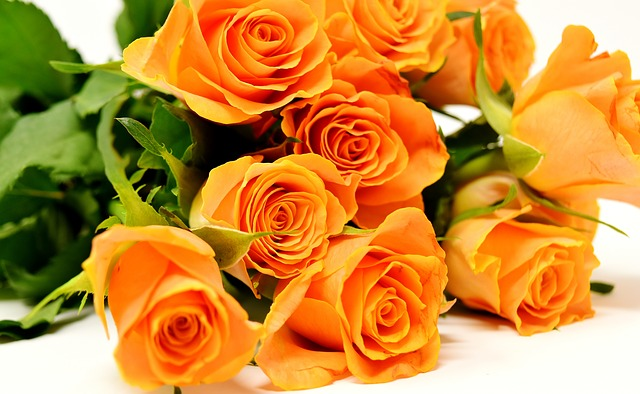 Different types of flowers florists sell and what they mean